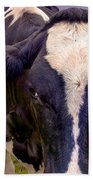 Friesian Beach Towel