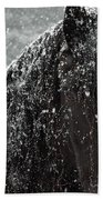 Friesian Snow Beach Towel by Fran J Scott