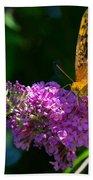 Fritillary Butterfly  Beach Towel