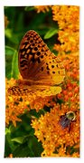 Fritillary On Butterfly Weed Beach Towel
