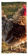 Frizzle Rooster Beach Towel