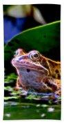 Frog 2 Beach Towel
