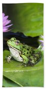 Frog And Water Lilies Beach Towel