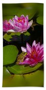 Frog And Water Lily Beach Towel