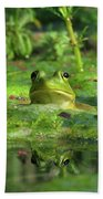 Frog Beach Towel