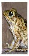 Frog-facing The Wall Beach Towel by Miguel Hernandez