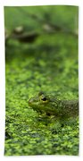 Frog In Swamp 2 Of 3 Beach Towel