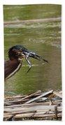 Frog Legs And Green Heron Beach Towel
