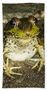 Frog Pose Beach Towel