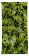 Frog Spawn Beach Towel