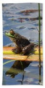 Froggy Reflections Beach Towel