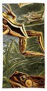 Frogs Detail Beach Towel