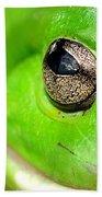 Frog's Eye Beach Towel by Kaye Menner