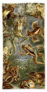 Frogs Frogs And More Frogs Beach Towel