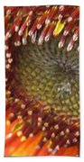 From Bud To Bloom - Sunflower Beach Towel