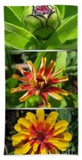 From Bud To Bloom - Zinnia Beach Towel
