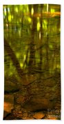 From River Rocks To Forest Reflections Beach Towel