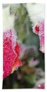 Frost Bears Down On Snapdragon Named Floral Showers Red And Yellow Bicolour Beach Towel