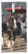 Frost Fair Horses Hastings Beach Towel