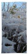 Frost Grass Beach Towel