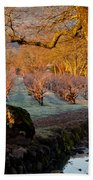 Frost In The Valley Of The Moon Beach Towel