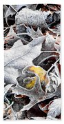 Frost On Leaves 1 Beach Towel