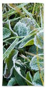Frost On Strawberry Leaves Beach Towel