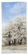 Frosted Copse Beach Towel