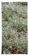 Frosted Grass Beach Towel