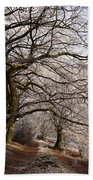 Frosted Path Beach Towel
