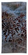 Frosted Rugosa Beach Towel
