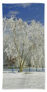 Frosted Trees - Newton Road Park Beach Towel