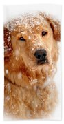 Frosty Mug Beach Towel by Christina Rollo