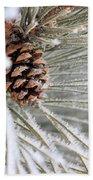 Frosty Norway Pine Beach Towel