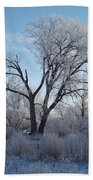 Frosty Trees 3 Beach Towel