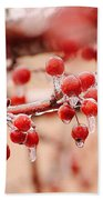 Frozen Berries Beach Towel