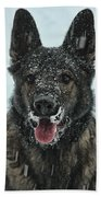 Frozen Fun Beach Towel