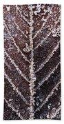 Frozen Leaf Beach Towel by Anne Gilbert