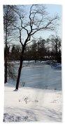 Frozen Pond2 Beach Towel