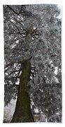Frozen Tree 2 Beach Towel