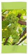 Fruit Of The Vine - Garden Art For The Kitchen Beach Towel