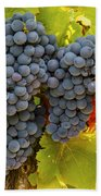 Fruit Of The Vine Imagine The Wine Beach Towel