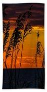 Ft. Myers Sea Oats Beach Towel