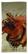 Fu Manchu Lionfish Beach Towel