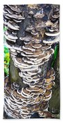 Fungus Invasion Beach Towel