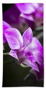 Fushia Orchid Beach Towel