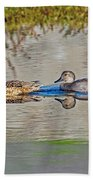 Gadwall Pair Swimming Together Beach Towel