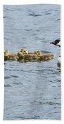 Gaggle Of Geese Beach Towel