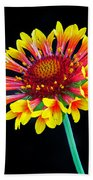 Gaillardia Arizona Sun Beach Towel