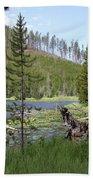 Gallatin River Yellowstone  Beach Towel